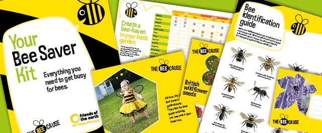 Cover Britain in wildflowers: The bee saver kit by Friends of the Earth https://www.foe.co.uk/what_we_do/bee_cause_david_cameron_petition_39395.html?utm_expid=4681116-13_referrer=http%3A%2F%2Fwww.foe.co.uk%2Fwhat_we_do%2F35522.htm