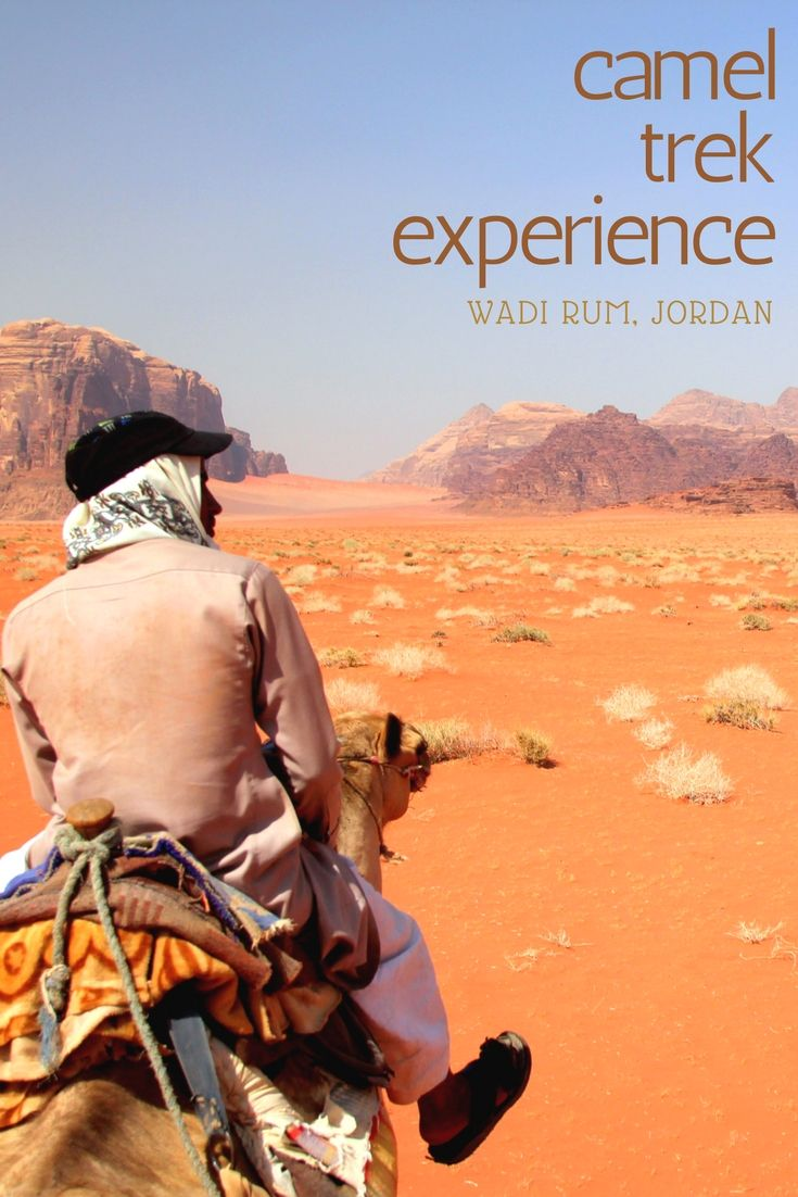 Would you like to live the real Wadi Rum experience in Jordan? Read the post to find out what to try and how much does it cost!