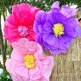 Create giant tissue paper flowers perfect for your next luau or party event.