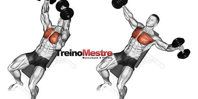 5 elementos fundamentais em um treino de musculação que