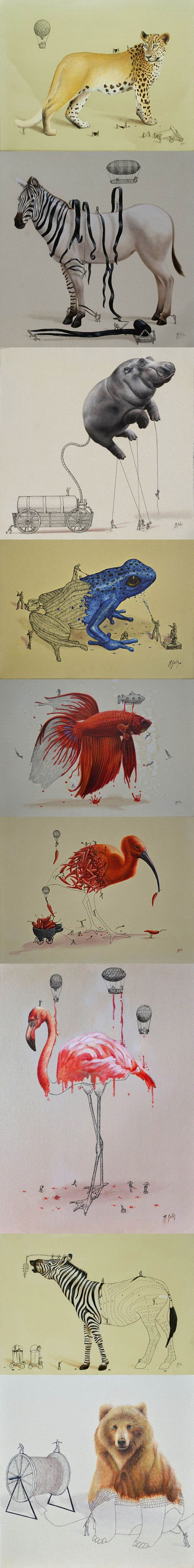 "The achievements of Ricardo Solís including this brilliant series image below which is a kind of exploration of the ""construction"" of different animals."
