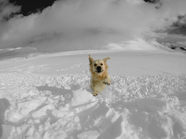on the snow by Andrea Argentati