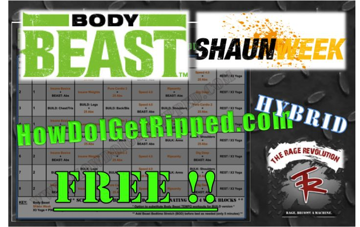 Check out the first ever Body Beast Shaun Week hybrid workout schedule that I created based on my experience and reviews of the new insane focus SHAUN WEEK program by Shaun T!! Free. Get the best of muscle gains via hypertrophy and cardio intervals (w/ and w/o weights) for accelerated results -- Get your free hybrid here! http://howdoigetripped.com/free-body-beast-shaun-week-hybrid/