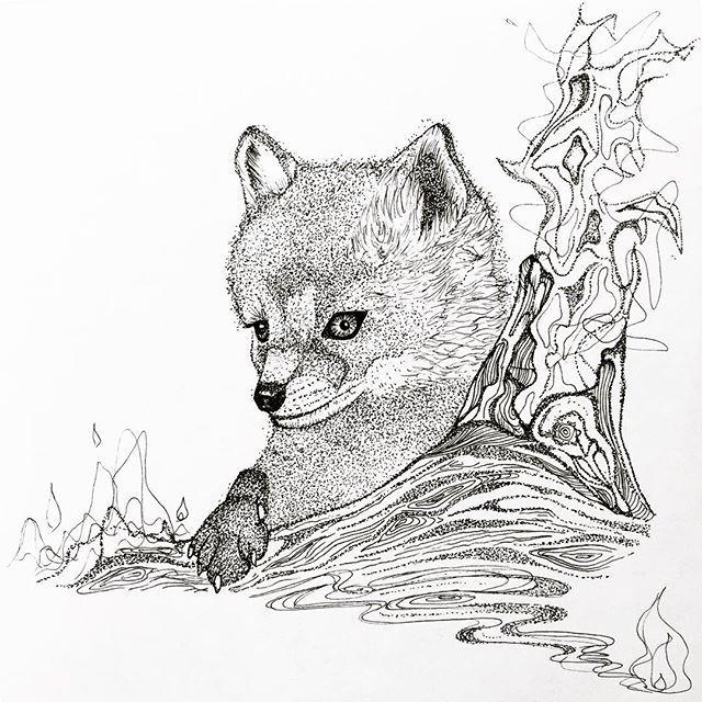 【kurokami.m】さんのInstagramをピンしています。 《🔅🔆キツネ🔆🔅* * キツネって悪者のイメージが強いけど、シャープな顔つきと、賢さゆえにかー🤔* 私的にかなり上位にいるー* かわえー😚💛🔆* *  #キツネ #きつね #fox #ひょっこり #森 #木 #花 #動物園 #zoo #イラスト #animal #illustration #art #らくがき #pen #ペン #コワカワイイ #tattoo #design #pointillism #stippling #cute #drawing #点描画 #illustagram #instaart  #black&white #instagood》