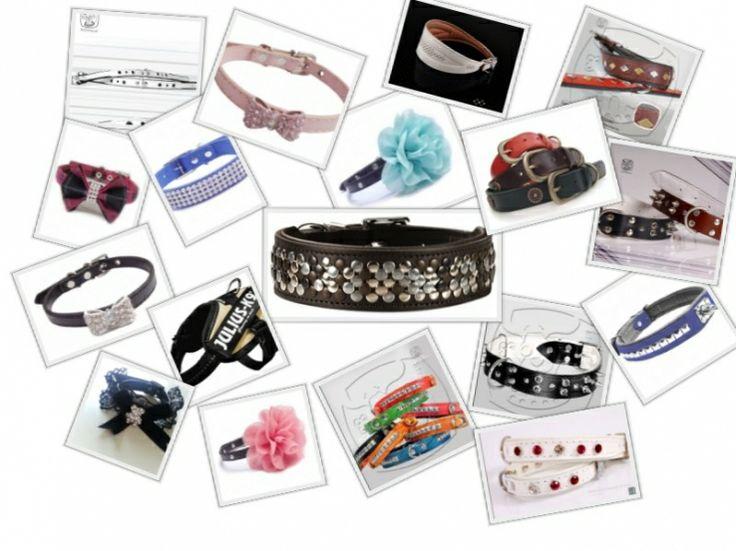 Halsbanden en lijnen   Snuffelspul, alles voor uw hond.