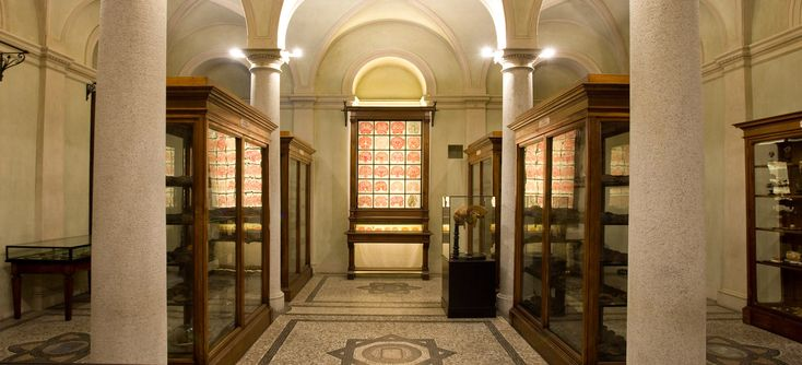 Museo di Anatomia Umana - interni