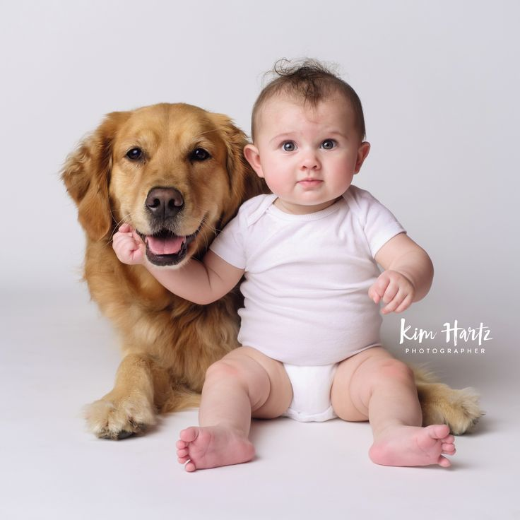 Baby And Dog Portraits