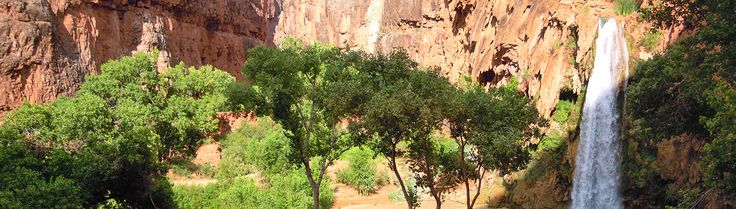 Plan the perfect waterfall trip at the Grand Canyon - information on Havasu Falls, Ribbon Falls, Elves Chasm and more!