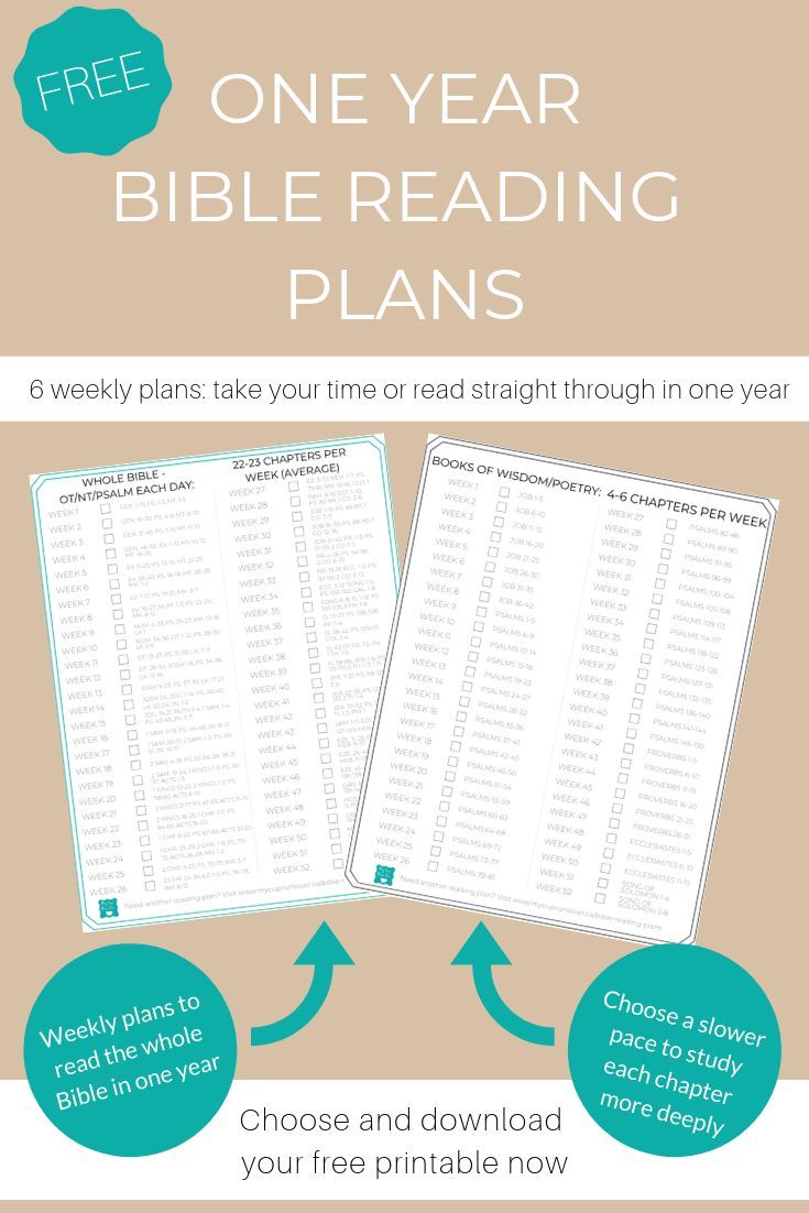 Bible reading plans should you read the bible in one year