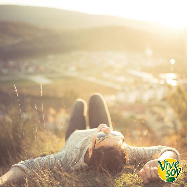 ¡Disfruta de tus momentos de #relax como a tí más te guste! #LoNaturalEsDisfrutarMás #DisfrutaConVivesoy #Vivesoy #MeCuido #Bienestar #Disfruta #BebidasVegetales #BebidasdeSoja #Soja #Salud #VivesoyLigera #Descanso #Relax #TuTiempo