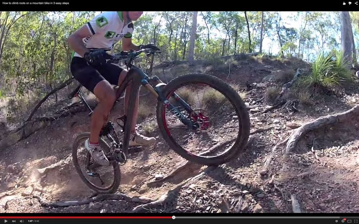 Video: How To Climb Roots on a Mountain Bike in 3 Easy Steps | Singletracks Mountain Bike News