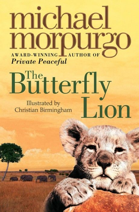 The Butterfly Lion - Michael Morpurgo.  Such a beautiful love story.  Read it to my son and we both cried.
