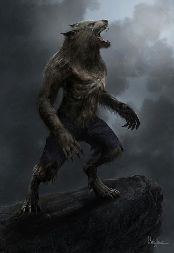 Half Human Half Wolf Male Werewolf howlin...