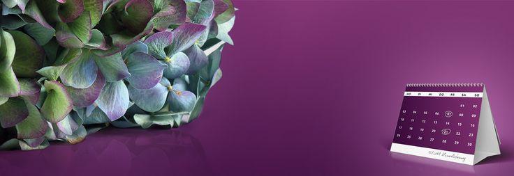 Blumen online bestellen beim Blumenversand MIFLORA