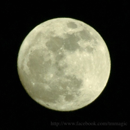 MIURA Hantou, JAPAN  5/5/2012 20:03 JST  Nikon D80  Sigma 18-200mm HSM  ISO200 f/6.3 1/320