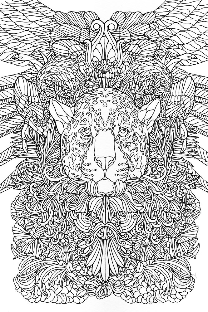 702 Best Images About Animal Coloring Pages For Adults On
