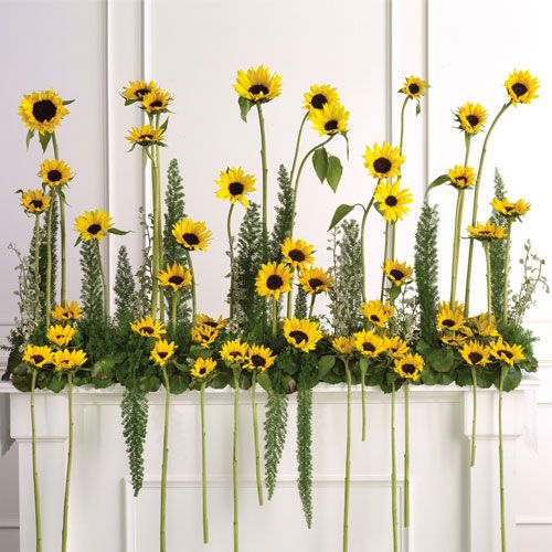 sunflower wedding centerpieces | Sunflower Altar Arrangement