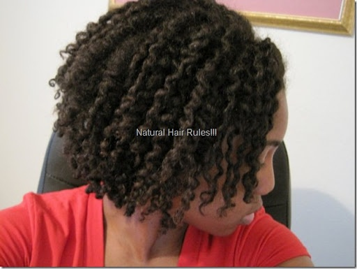 the two strand twist out, new best friendTwist Outs, Two Strand Twists, Twists Out, Nature Hair Lov, Nature Hairstyles, Longer Twists, Naturalhair, Natural Hairstyles, Natual Hairstyles