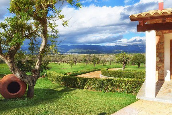 Yoga Urlaub auf Mallorca  /  Yoga & Wandern  – für Einsteiger  / Erlebe die Magie des Yoga und Mallorca von seinen schönsten Seiten.  Start up mit Yoga geht in jedem Alter … / …und es gibt viele gute Gründe damit anzufangen.