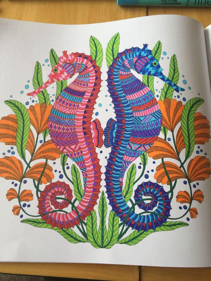Millie Marotta Sea Horse Tropical Wonderland Coloring BooksColouringAdult