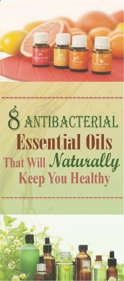 This 8 Antibacterial Essential Oils That Will Naturally Keep You Healthy