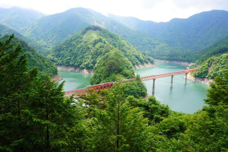 「焼津グランドホテル」オーシャンビュー確約! 静岡の新茶と秘境を楽しむ旅【申し込み受付中】 #バスツアー #焼津 #旅