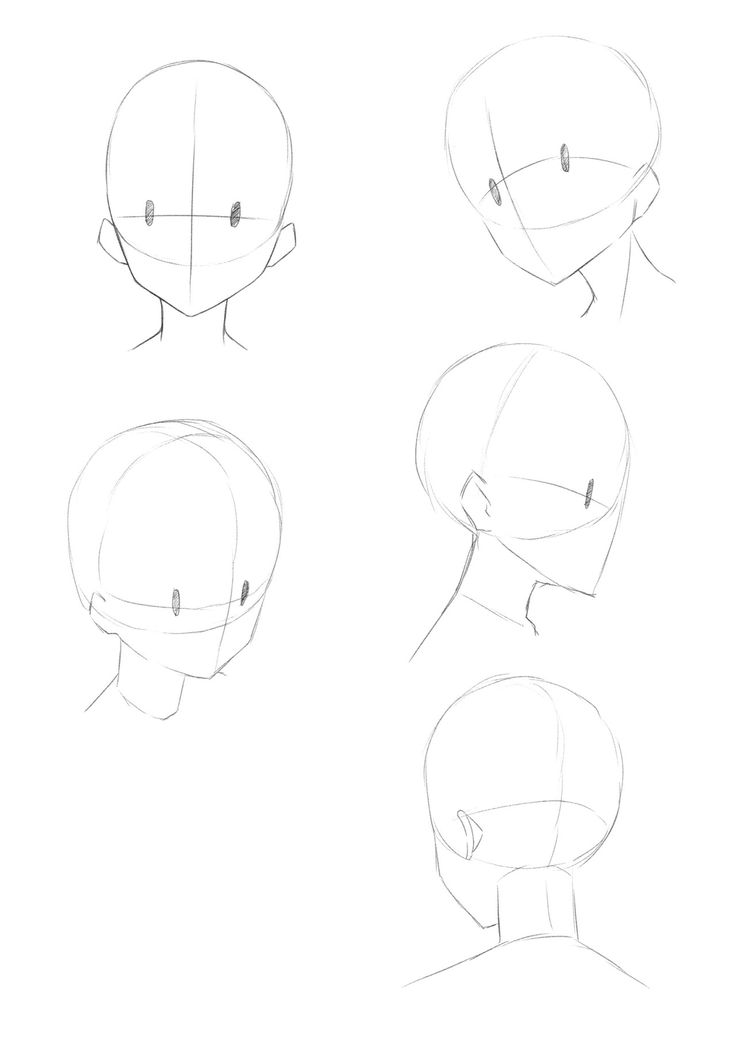 World Manga Academy Learn How To Draw A Face In Different Angles All