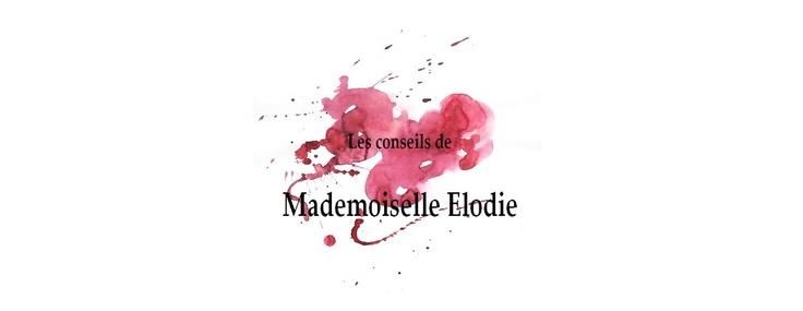 http://mademoiselle-elodie.blogspot.fr/  Nouveau design :)