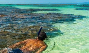 AS GALÉS DE MARAGOGI: O Caribe em terras tupiniquins