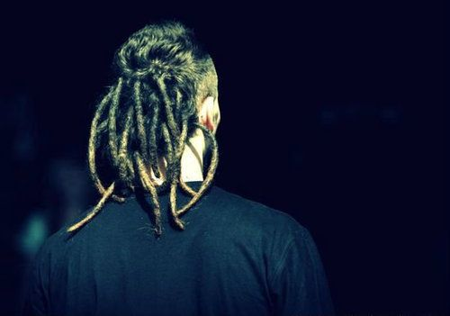 kamil bednarek; dreadlocks