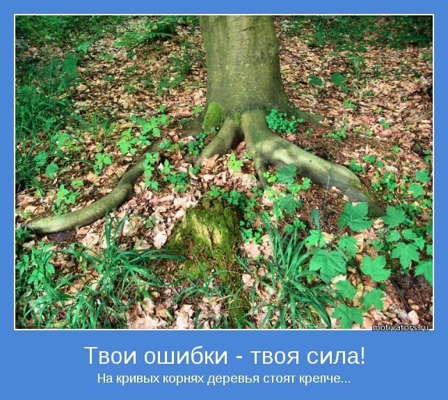 На кривых корнях деревья стоят крепче...