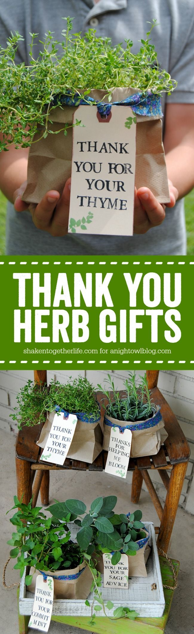 Thoughtful stamped tags & pretty fabric ties dress up plain potted herbs for Thank You Herb Gifts! Perfect for sustainable mission based orgs