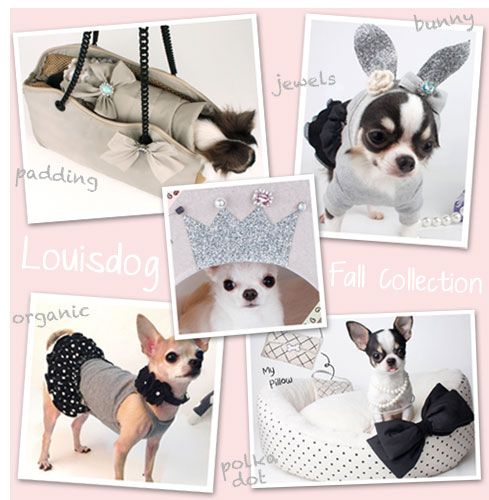 pet shop online, dog grooming equipment, discount pet supplies, puppy clothes --> www.funnyfur.com