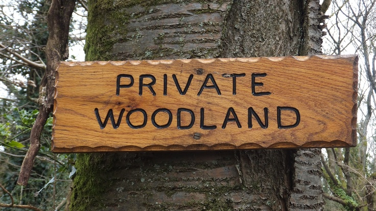 Hand carved wooden signs made using a router free