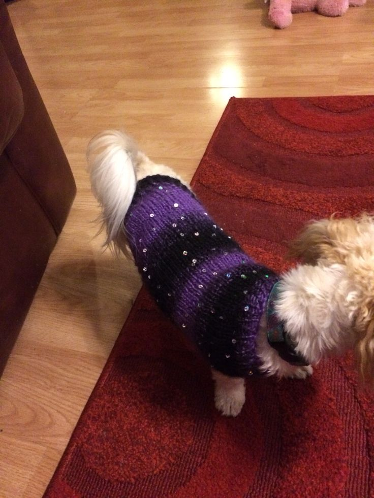 Sequined puppy sweater for Moxie
