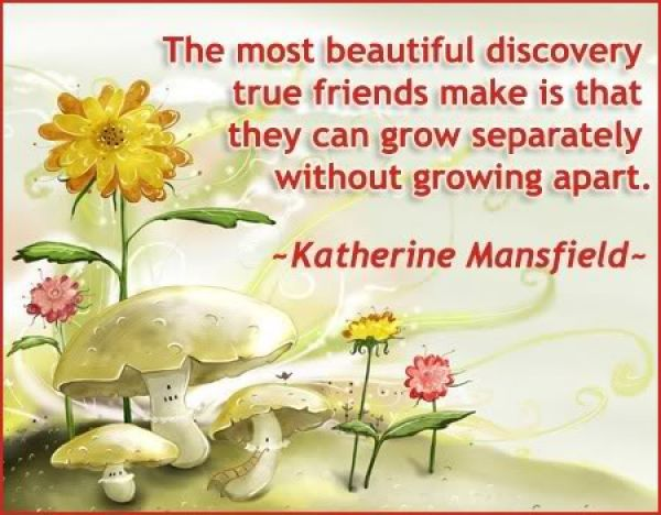 International Friendship Day Quotes  The Friendship Page Friendship Quotes