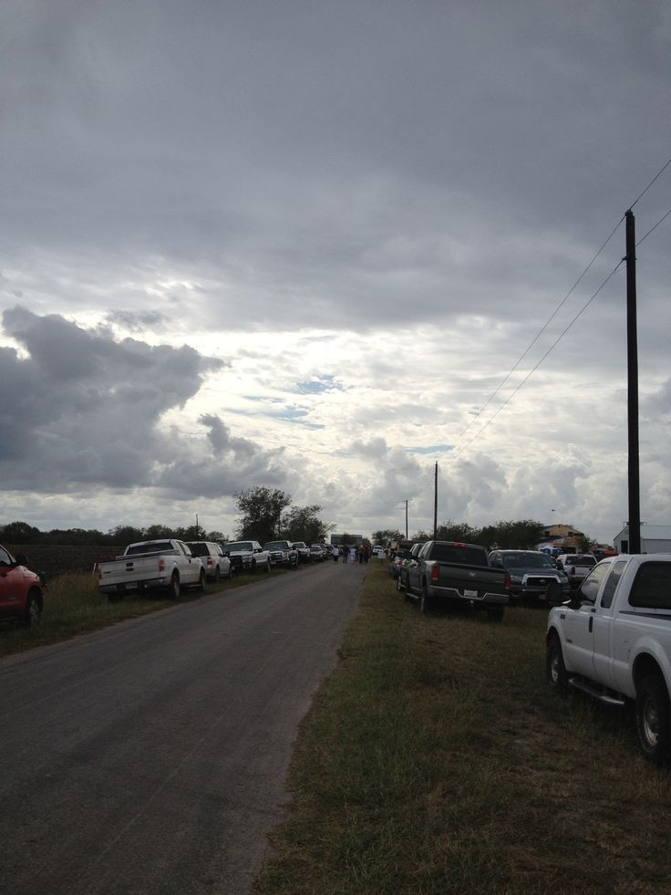 Amish auction day in Bee County, Texas