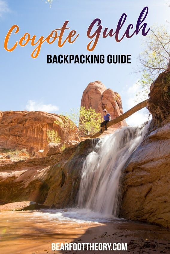 Check out our detailed backpacking guide for exploring Coyote Gulch in Utah. Our guide includes information on gear, campsites, permits & trailheads.