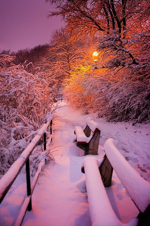 Evening Snow Fall