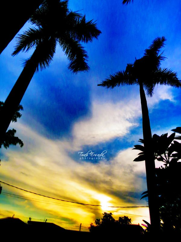 Evening Colors | Photography by Tuah Ersada, via Behance  #nature #sunset #sky #tree #HDR #journalism #art #beautiful # evening #weather #blue #colors #photography #cool #awesome