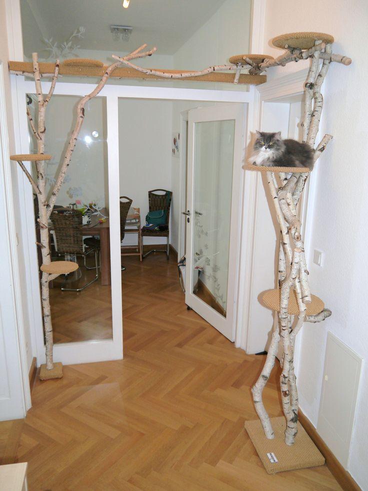 We Build Your Cat Tree Sandy S Cat World Pinterest Avec Cat Scratching Tree Self Et 7 Sur La Gorie Interior Design And Decor