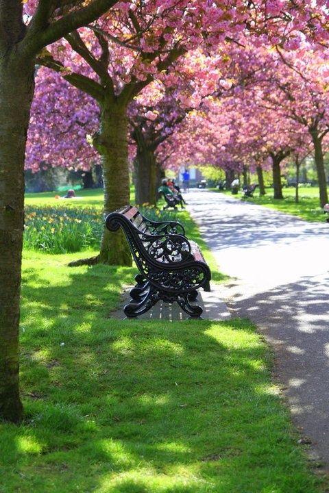 Greenwich Park, London,England