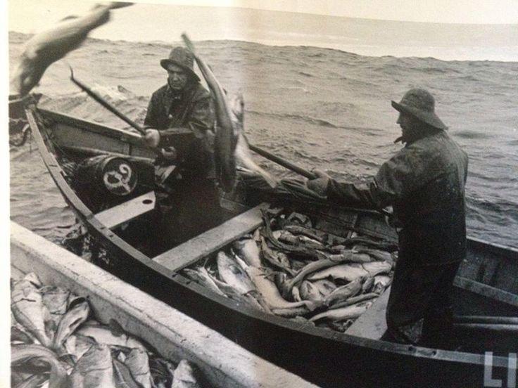 Cod Fishing Newfoundland www.forklengthfashion.com