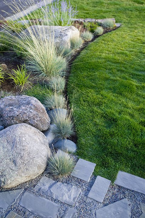 25 best images about colorado style landscape design on for Hearty ornamental grasses
