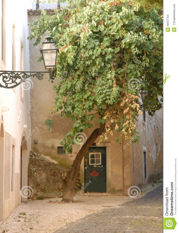 Lisbon in Portugal. Lisbon in addition to being the capital of Portugal is full of charm and history. City of Fado singer gave the Portuguese force activity constituting one of the most visited destinations in the world. Lisbon Thanks to all the works also French and Arabic has a diverse cultural heritage and a great wealth. Photo of a small corner located in an alley of città.Foto made interesting by the set of three main elements: the street lamp in the foreground; the tree and the metal…