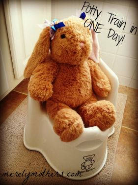 Post image for Top-Ten Tuesday: What You Need to Potty Train in
