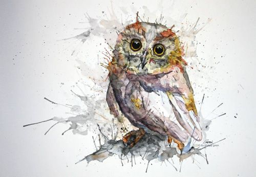 Philipp Grein - owl