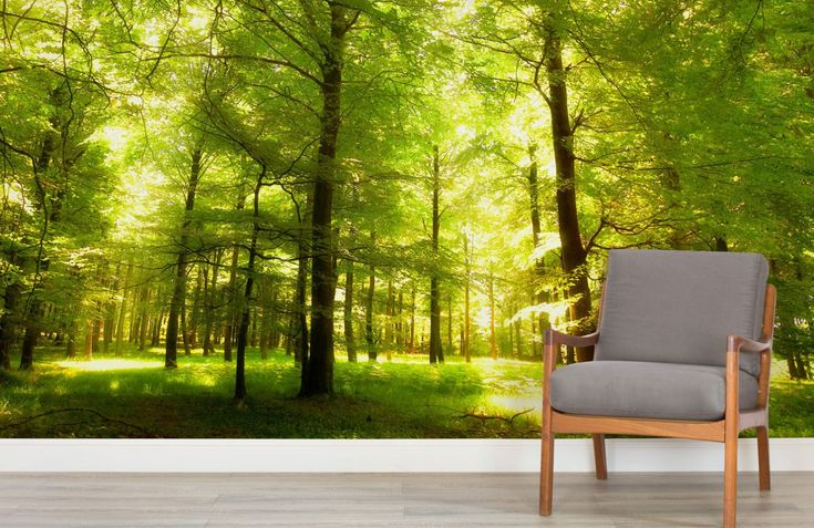 Green Oak Forest Wallpaper Wall Mural Muralswallpaper Co Uk