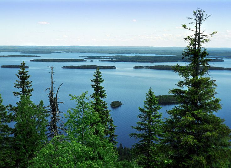 Lake Pielinen as seen from Koli; one of the most acknowlegded landscapes in Finland.