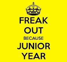 Junior year of high school need some advice?